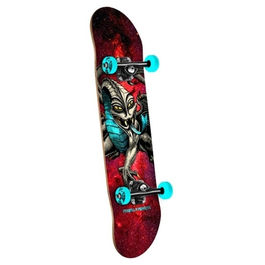 POWELL PERALTA Cap Dragon Cosmic Red 7.75